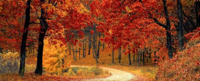 мой октябрь осень холода ностальгия воспоминания блог мысли вслух