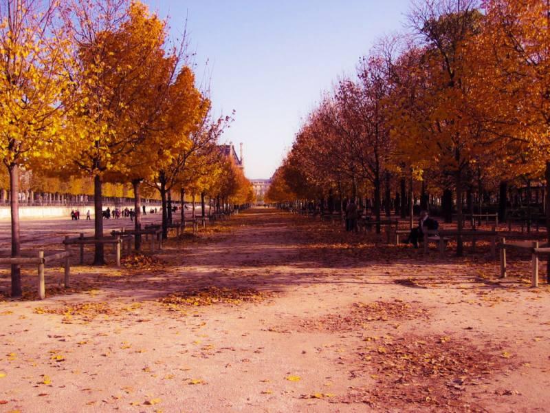 золотая осень в Риге Рига медовый месяц, Европа Латвия, осень мысли вслух Дарья Журавлева